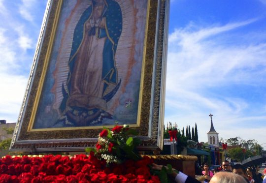abg-roses-for-la-virgen-photo-dec072014
